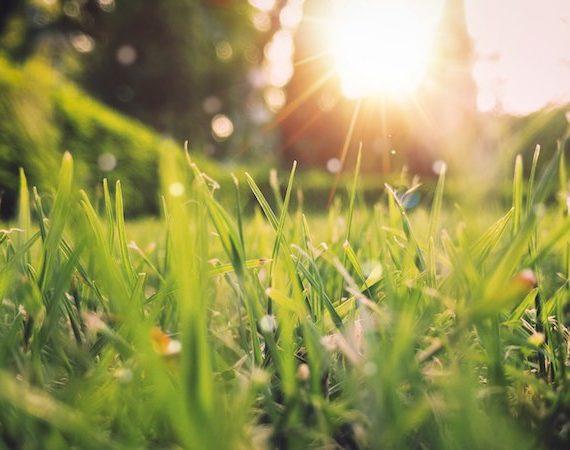 Cómo afecta la primavera a estudiantes